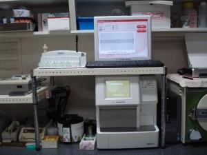 DSC04945 (800x600)